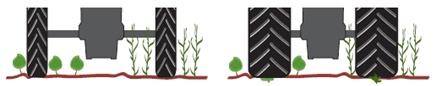 Monte en pneus étroits pour préserver les plants