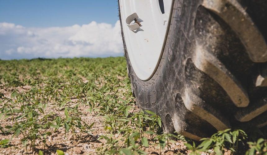 éviter le tassement et préserver votre sol