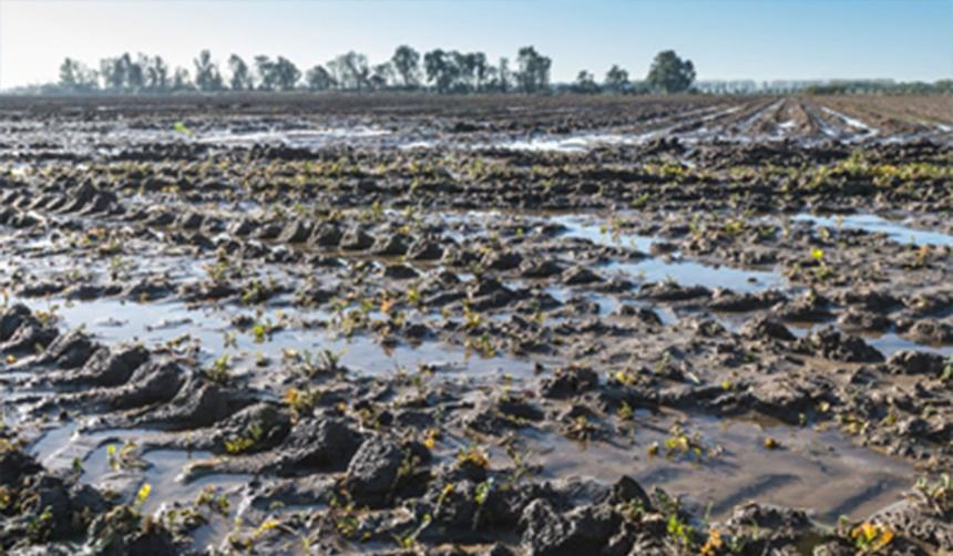 état du sol eau stagnante