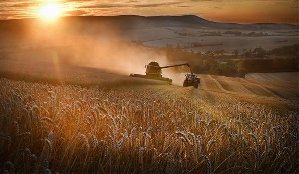 Chantier de récolte : comment obtenir un meilleur bonus de charge ?