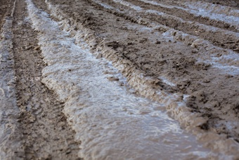 terre avec mauvaise circulation de l'eau