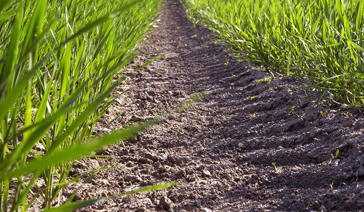 conséquences de pneus abimés pour vos sols